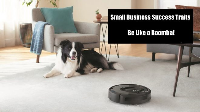 Successful Small Business Owner Traits - Be Like Roombas!