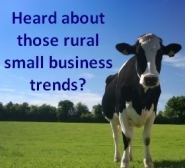 Rural small business trends 2009