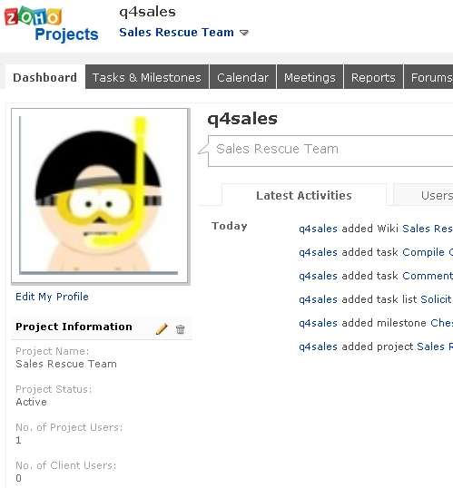 Sales Rescue Zoho Project Dashboard view