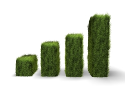 Sustainability Scores and Small Business
