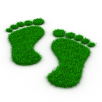 5 Steps to Building an Effective Green Team