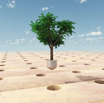 The Lowdown on Buying Carbon Offsets - Small Business Trends