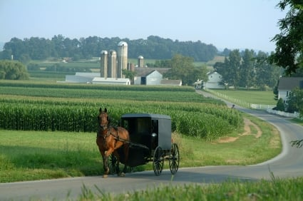 Amish sustainable suppliers