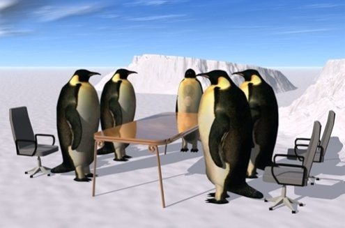 Penguin Board of Directors