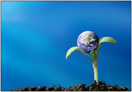 Five Green Business Trends for 2011