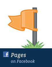 Ins & Outs of the New Facebook Brand Pages - Small Business