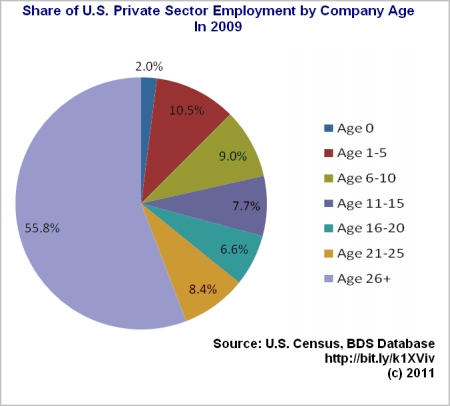 Employment in startups, by company age