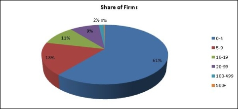 share of firms chart