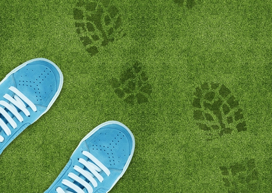 4 Sustainability Trends Among Retailers