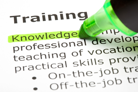 Do You Have Training Processes in Place?