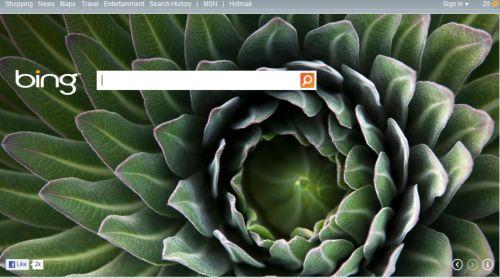 Bing - an alternative to Google