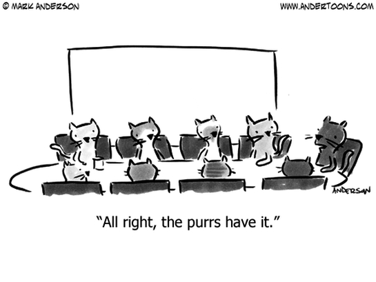 vote business cat cartoon