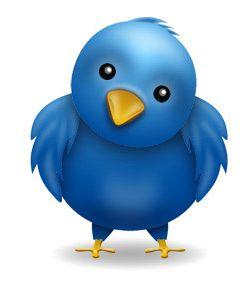 Twitter bird dark