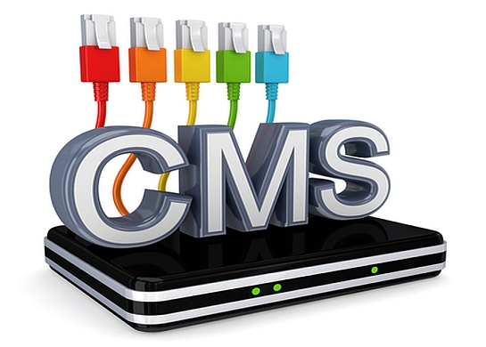 Content Management WordPress Plugins