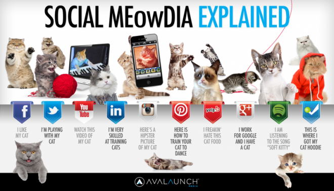Social_Media_Explained4-800x457