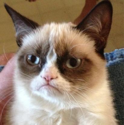 Grumpy cat trademark