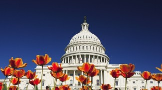 Washington and small business news