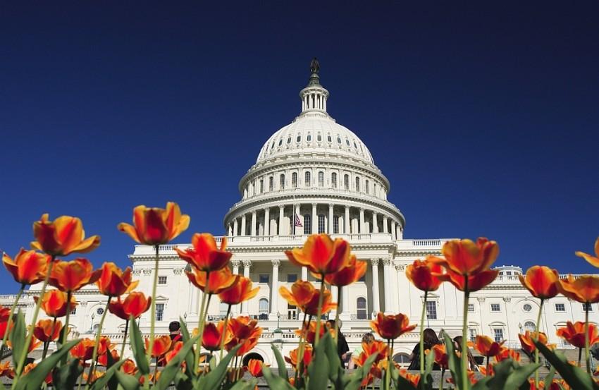 Washington and small business news