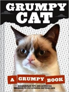 grumpy cat movie