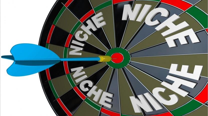 niche in nonprofits