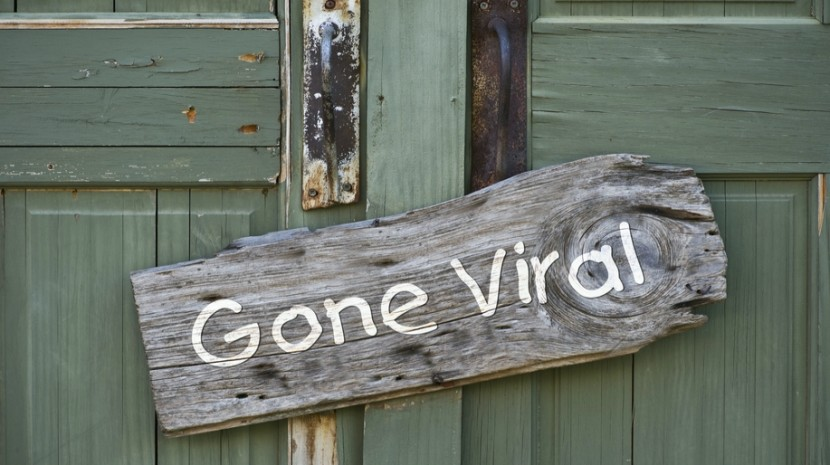 viral marketing campaigns