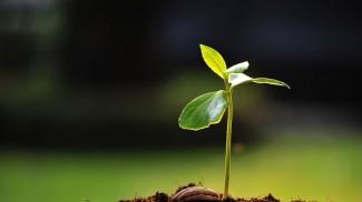 start a business - entrepreneurs - startups