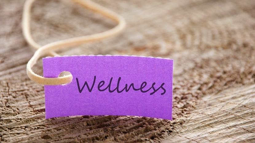small business wellness programs