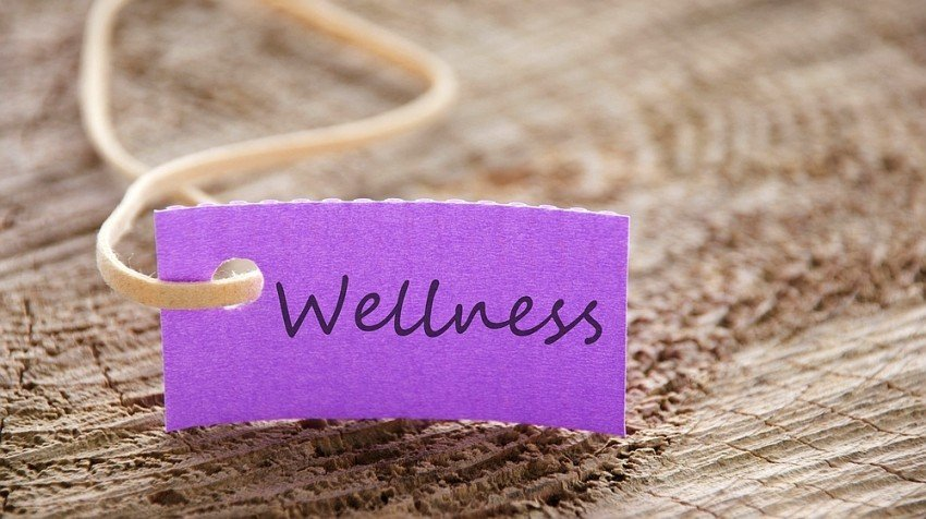 small business wellness programs