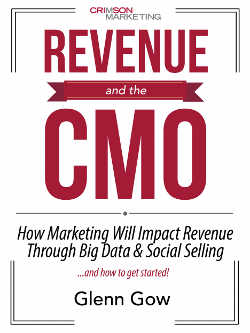 """""""Revenue and The CMO"""" Provides Case Study Worth Reading"""