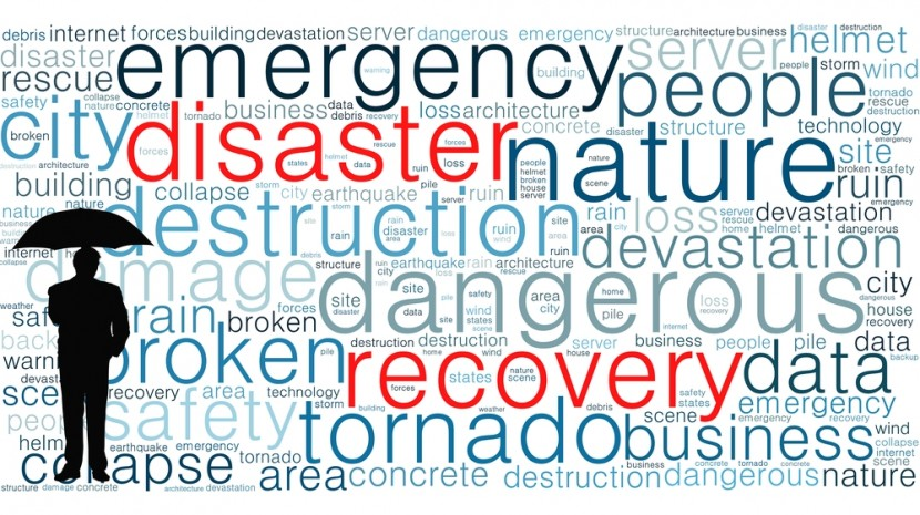 business disaster survival