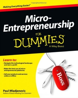 micro entrepreneurship for dummies