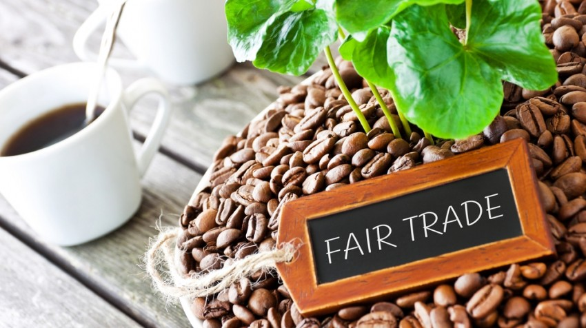 Coffee Company CEOs Should Watch What They Say About Fair Trade