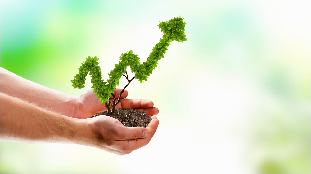 Tips For Growing Your Business on Money Management Tips