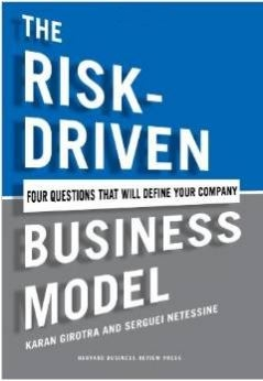 risk driven business model