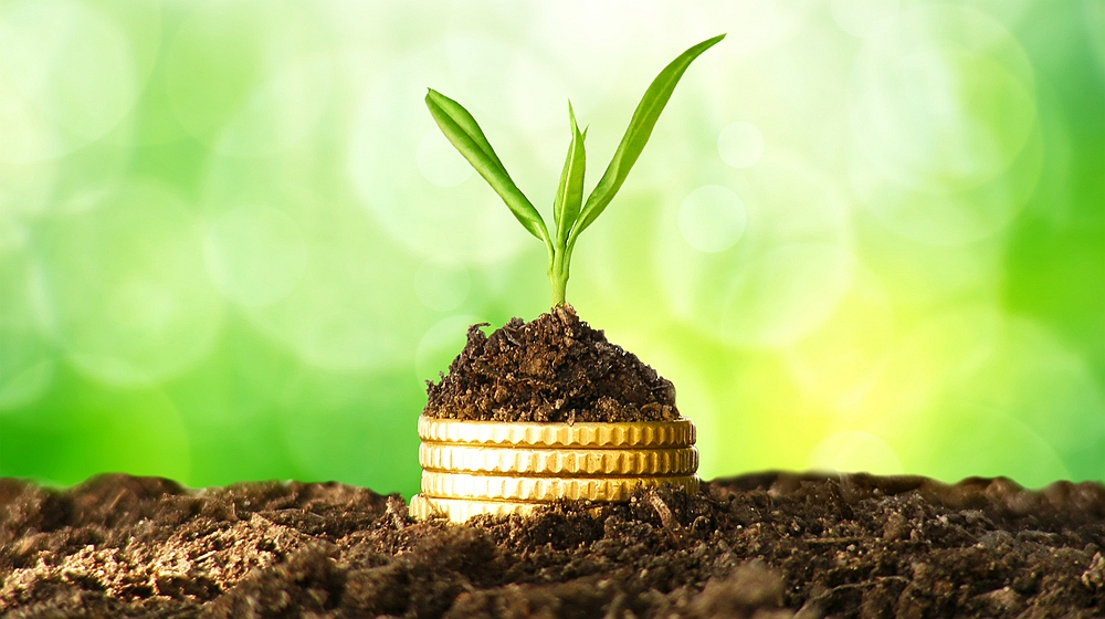 5 Quick Tips on How to Grow and Scale Your Business