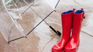 Rainy DayEDIT