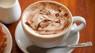 cat latte art 3