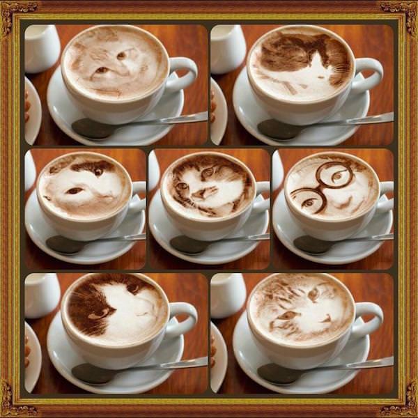 cat latte art 4