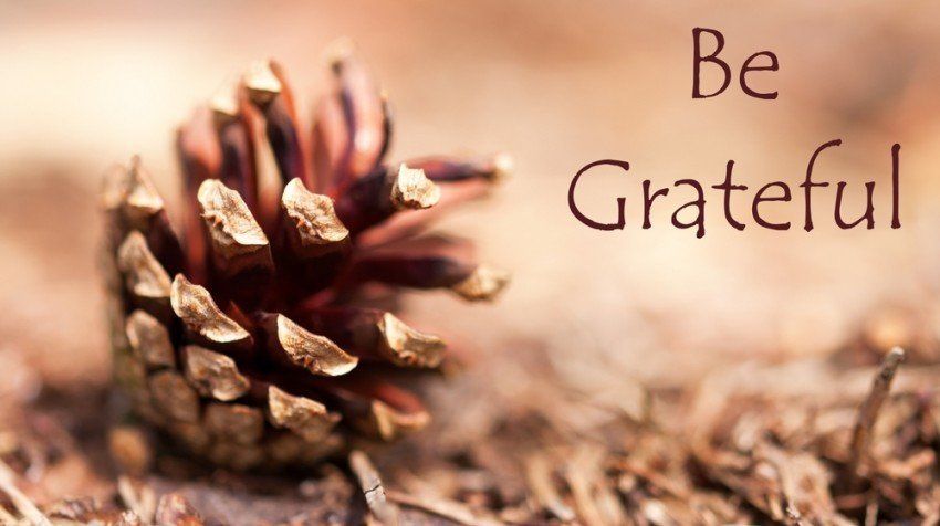 things to be thankful for in business