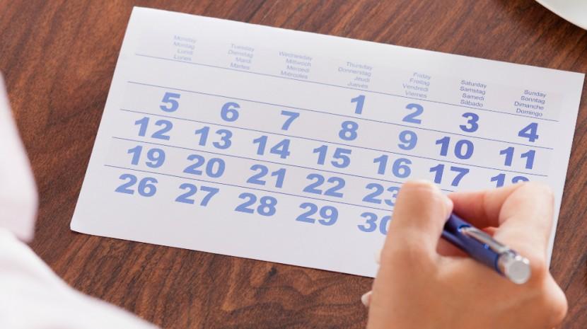 social media publishing schedule
