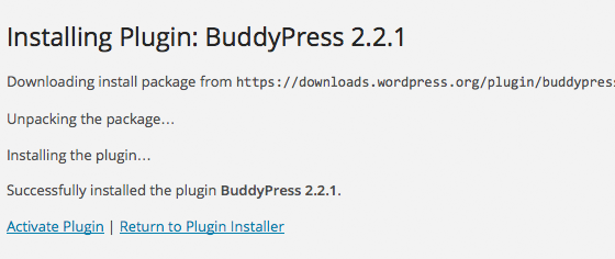 WordPress Plugin Installed - Activate?