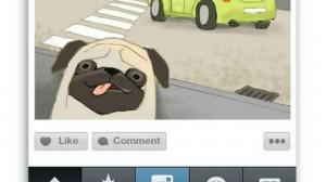 instagram viewer guide