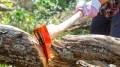 ax chop