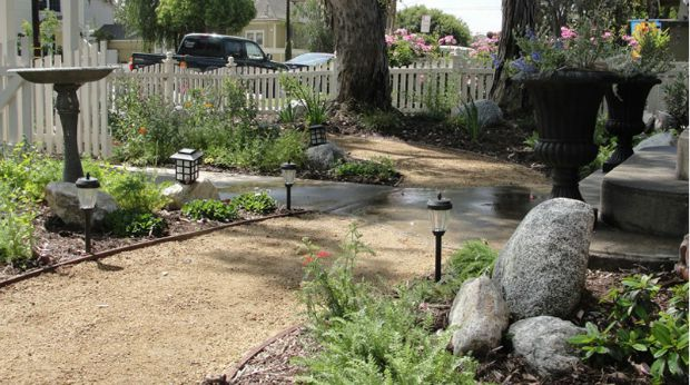 native plant landscaping california drought