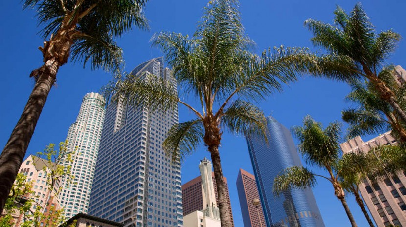 Events Are Planned From New York to LA During the Holiday Season