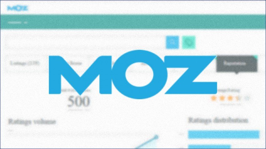MOZ Local Search Insights