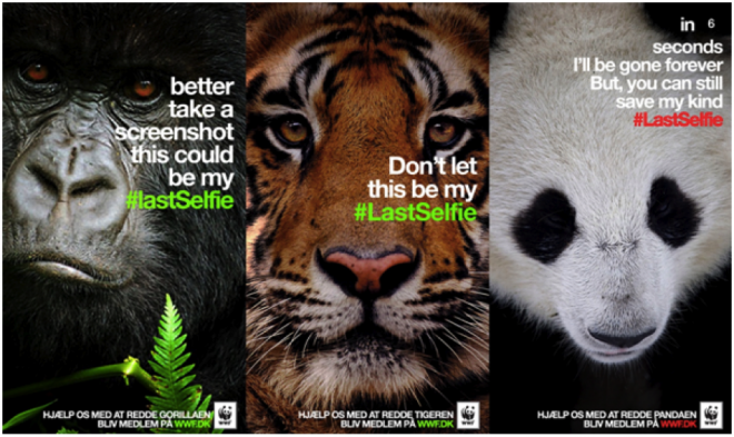 best viral campaigns 2015