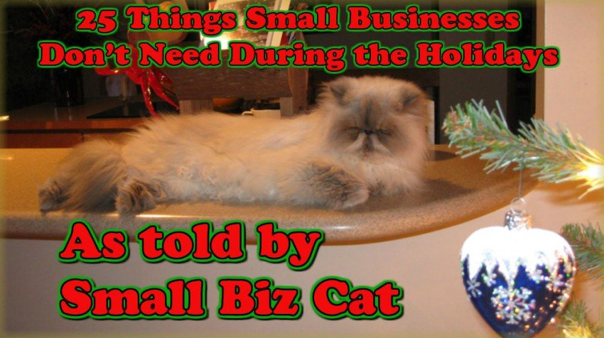 small biz cat featured with title
