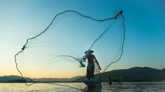 cast a bigger net
