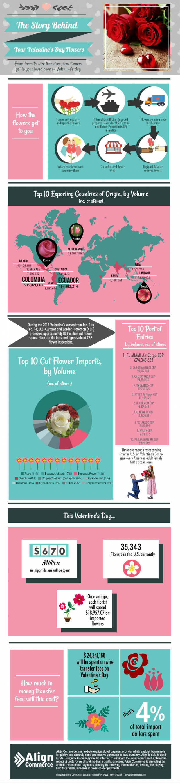 Flowers for Valentine's Day infographic